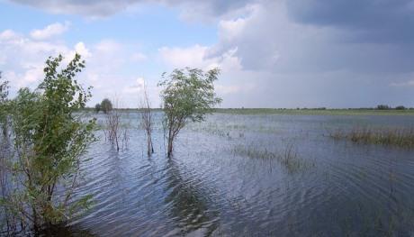 В Астраханской области прошли учения по пропуску паводковых вод