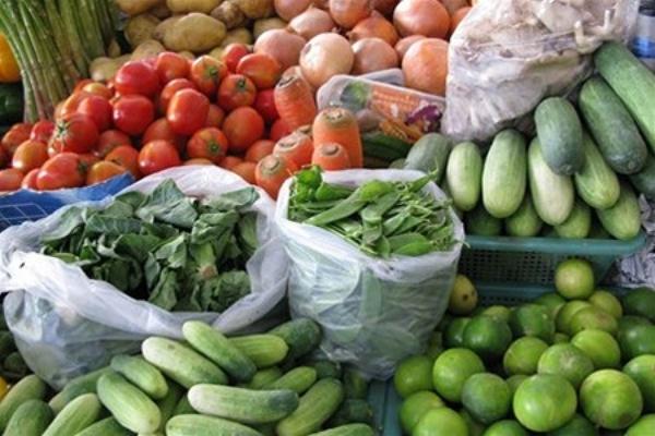 Логистические центры упростят хранение и перевозку сельхозпродуктов на Кубани