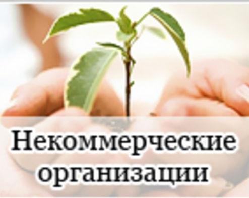 Калмыкия получит в 2015 году субсидии на СОНКО