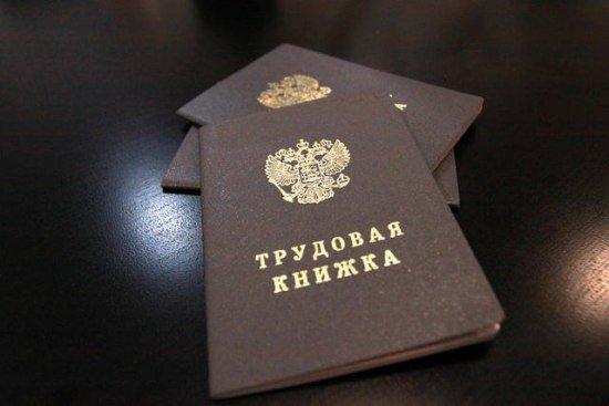 Количество резюме в Краснодарском крае растет