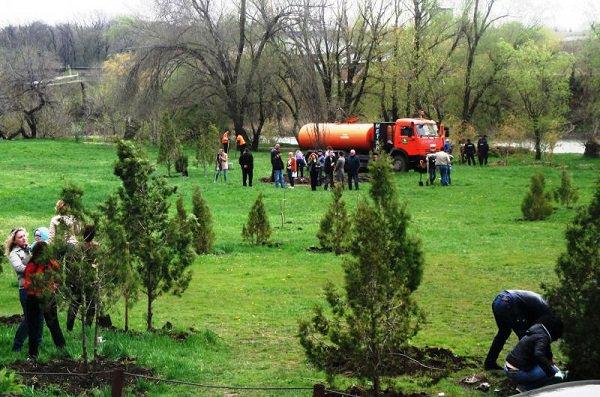 День древонасаждений отметили в Ростовской области