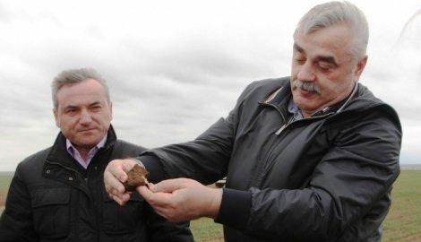 В Волгоградской области придется пересеять 250 тысяч гектаров озимых