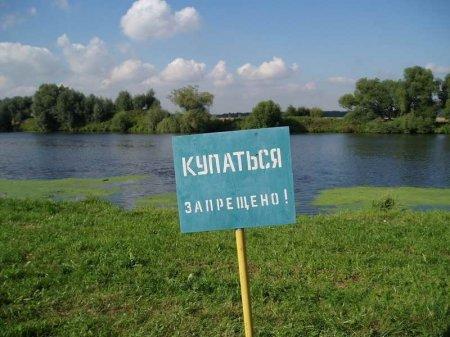 Краснодарцам запрещено купаться в местных водоемах
