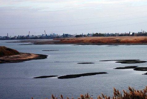 В Волгоградской области ситуация с маловодьем стала критической