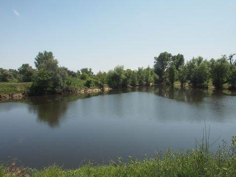 Волгоградская область: нужен комплексный подход к обводнению