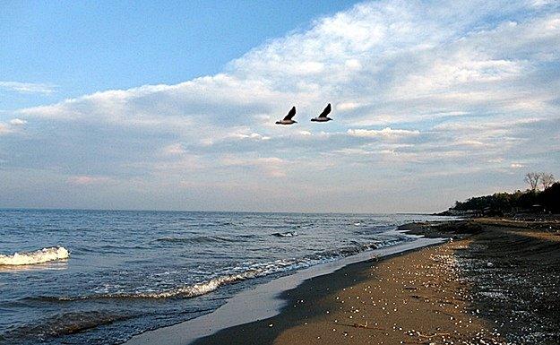 В августе Астрахань примет «День Каспия»