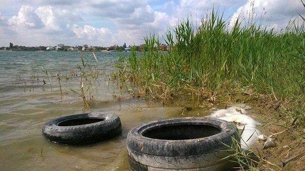Грязь на берегу Солёного озера мешает отдыху жителей Ростова и Батайска