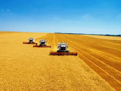 В Ростовской области собрали 26,5 тыс. тонн зерна