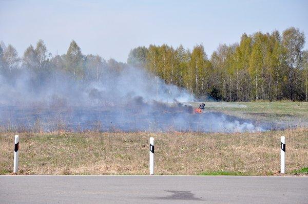 Лесной пожар вблизи Геленджика ликвидирован