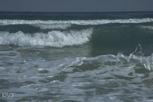 Вода в Чёрном море в районе Сочи соответствует всем нормам