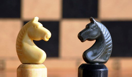 Волгоград может остаться без шахмат