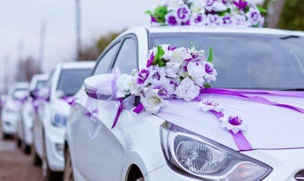 Специальная группа «свадебной полиции» создана в Адыгее