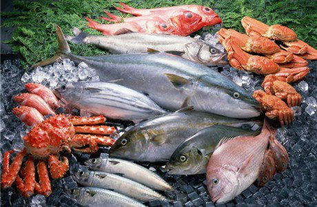 Почти треть мороженной рыбы, проверенной экспертами в Ростове, не соответствует нормативам