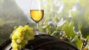 Вино в Краснодарском крае может стать дороже на 40%