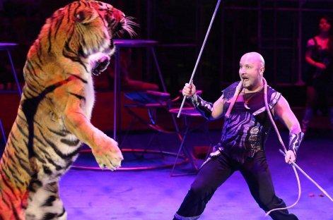 В цирке Астрахани состоялось благотворительное представление для детей