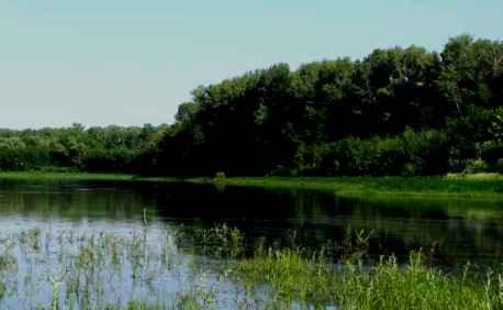 В Астрахани обсудили рациональное использование водных ресурсов
