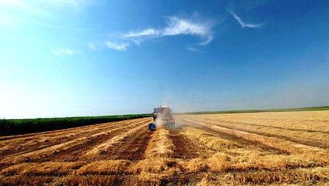 На Кубани будет работать информационно-космическая система по страхованию сельхозугодий