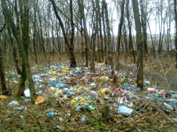 В Ростовской области озаботились проблемой несанкционированных свалок