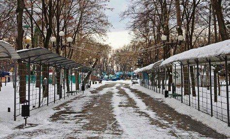 В Краснодаре введен запрет на застройку зеленых зон
