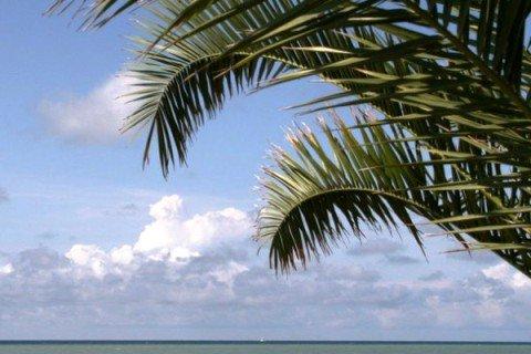 На курортах Кубани услугу