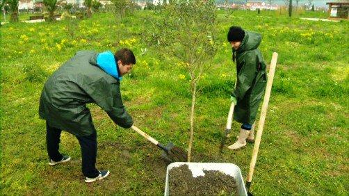 2 тыс. волонтеров приняли участие в экологической акции в Сочи