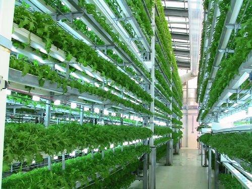 АгроБизнесИнкубатор в Адыгее не будет запущен в этом году