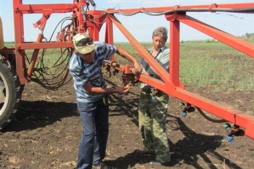 В Волгоградской области яровыми засеяли 815 тыс. га