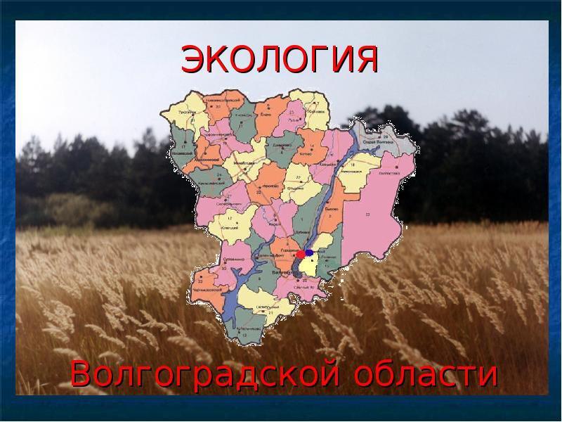 В Волгоградской области образован региональный экологический центр