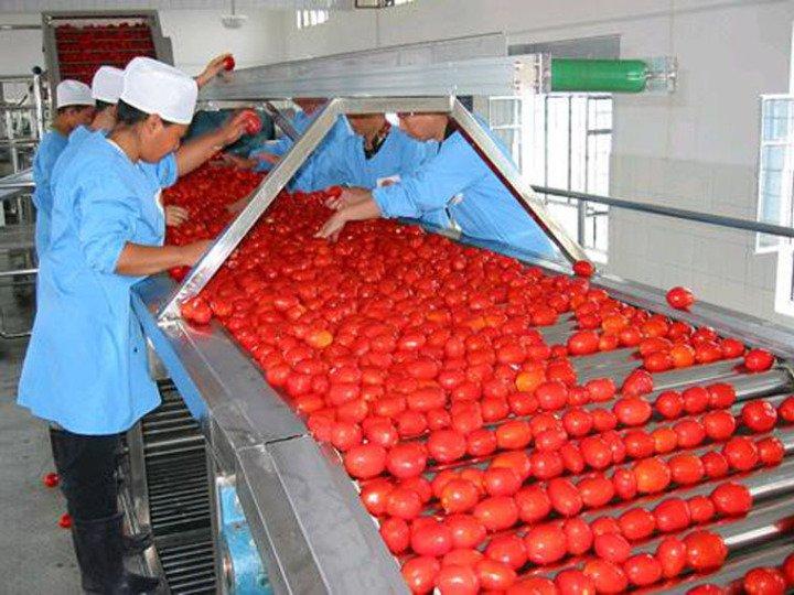 В Астраханской области запустят производство томатной пасты