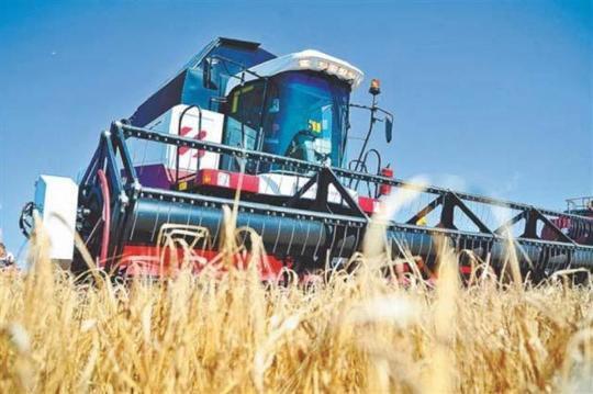 Зерно в обмен на киви: представители Ирана побывали с бизнес-миссией в Волгограде