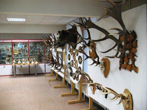 Выставка для охотников и рыболовов