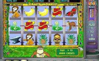 Crazy Monkey - лучшее развлечение в наши дни