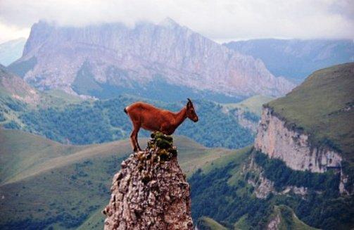 Недостпные места в горах Адыгее можно увидеть с помощью легкой авиатехники
