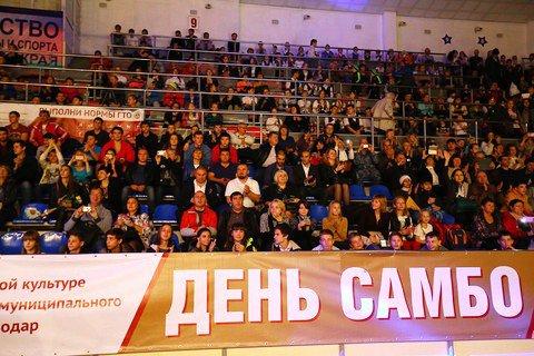 Всероссийский день самбо в Краснодаре отметили фестивалем единоборств