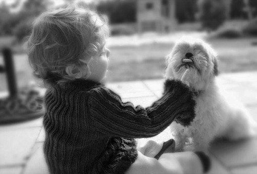 Детей с синдромом Дауна приучают сосуществовать с животными
