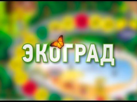 Добровольцы решили собирать пластиковый мусор в Астрахани
