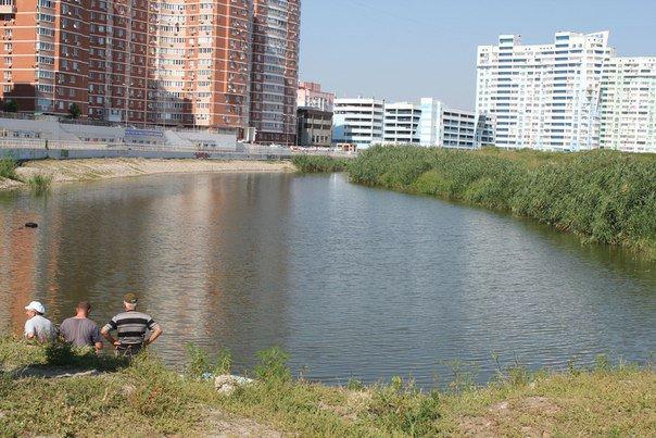 Краснодар вернется к вопросу о благоустройстве Карасунских прудов
