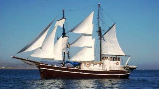 Музей морских путешествий откроется  в Сочи