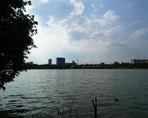 Мэр Краснодара взялся за Карасунские пруды