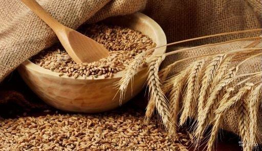 В Волгограде пересмотрят объемы производства хлеба