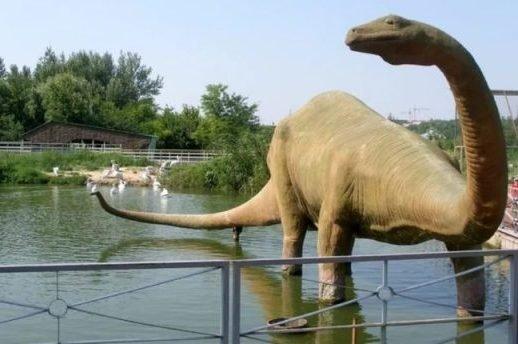 К 90-летию ростовского зоопарка откроют музей его истории