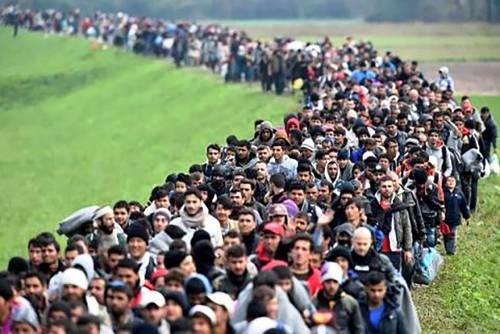 По итогам 2016 г. миграционный прирост Ростовской области – около 5 тыс. человек