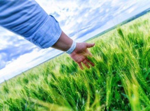 Обучающие семинары для аграриев начали проводить в кубанских селах