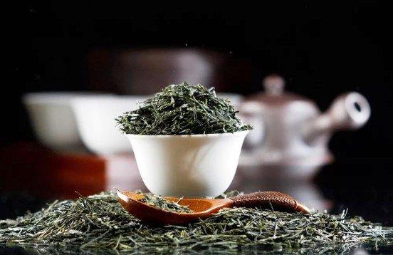Возрождать чаеводство на Кубани будет первый чайный кооператив