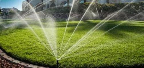 Новая поливочная система появится в волгоградском парке