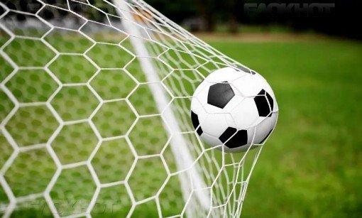 В Волгограде разогнали Футбольную федерацию