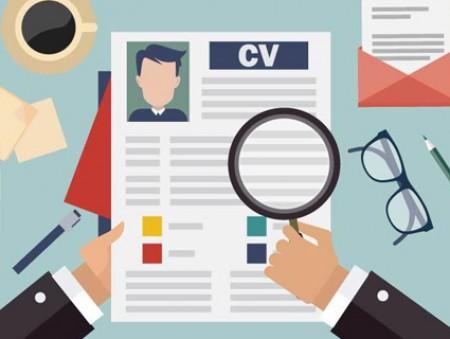 Досье и резюме – важные документы для работодателя