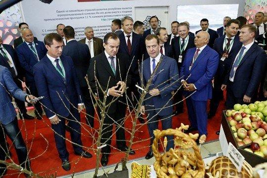 Питомниководческий научный центра на Кубани может получить федеральную поддержку