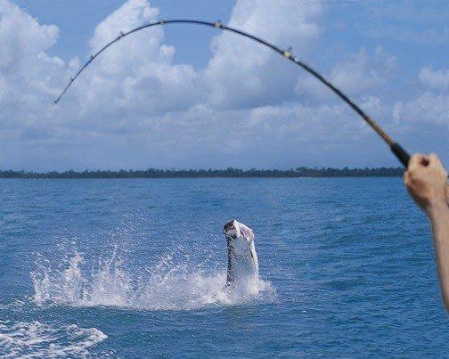 Рыбная ловля - для избранных