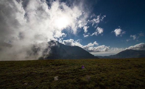 Сочинский национальный парк и Кавказский заповедник не объединятся